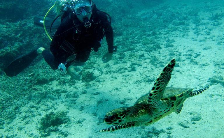 costa rica luxury vacation scuba diving