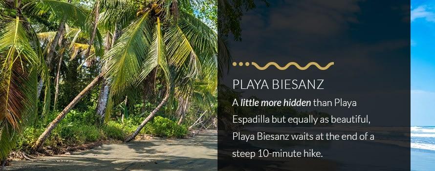 Playa Biesanz Beach in Manuel Antonio Hidden at End of Steep 10-Minute Hike