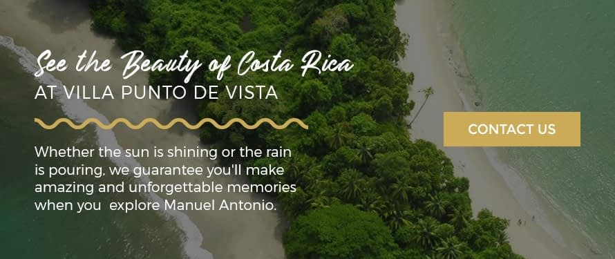 what to do in manuel antonio when it rains