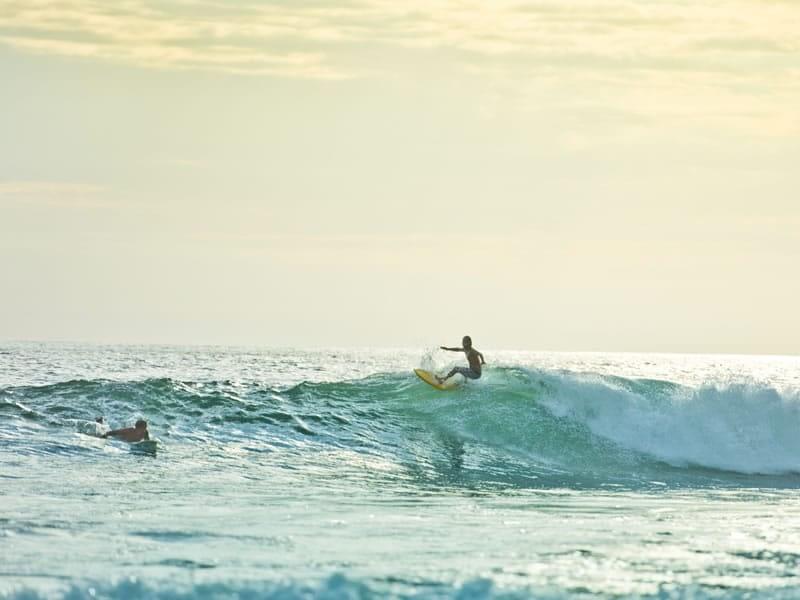 Waves & Surfing