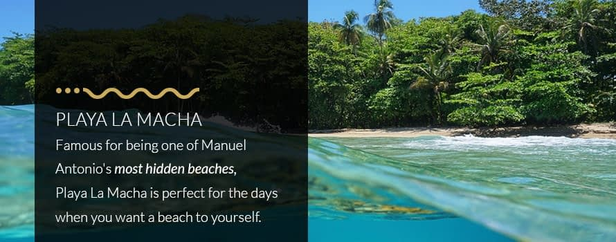 Playa La Macha One of Manuel Antonio Costa Rica's Most Hidden Beaches